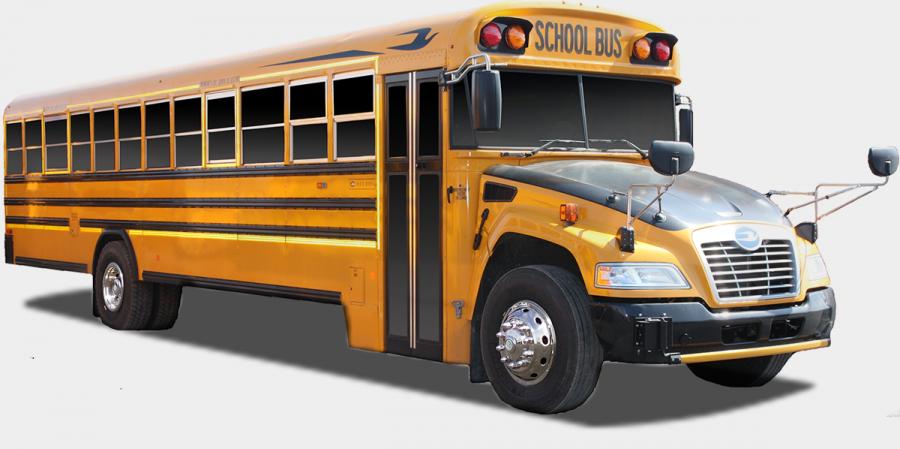 Blue Bird School Bus Vision